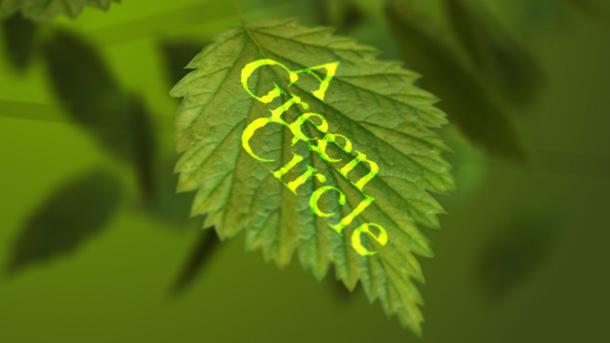 leaf2-610x3431