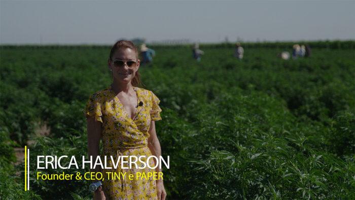 woman stands in hemp field in video series Hemp Already